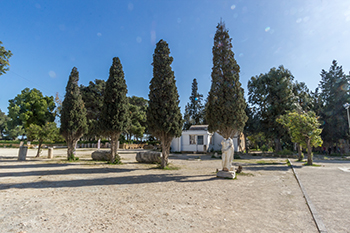 Le Musée de Carthage