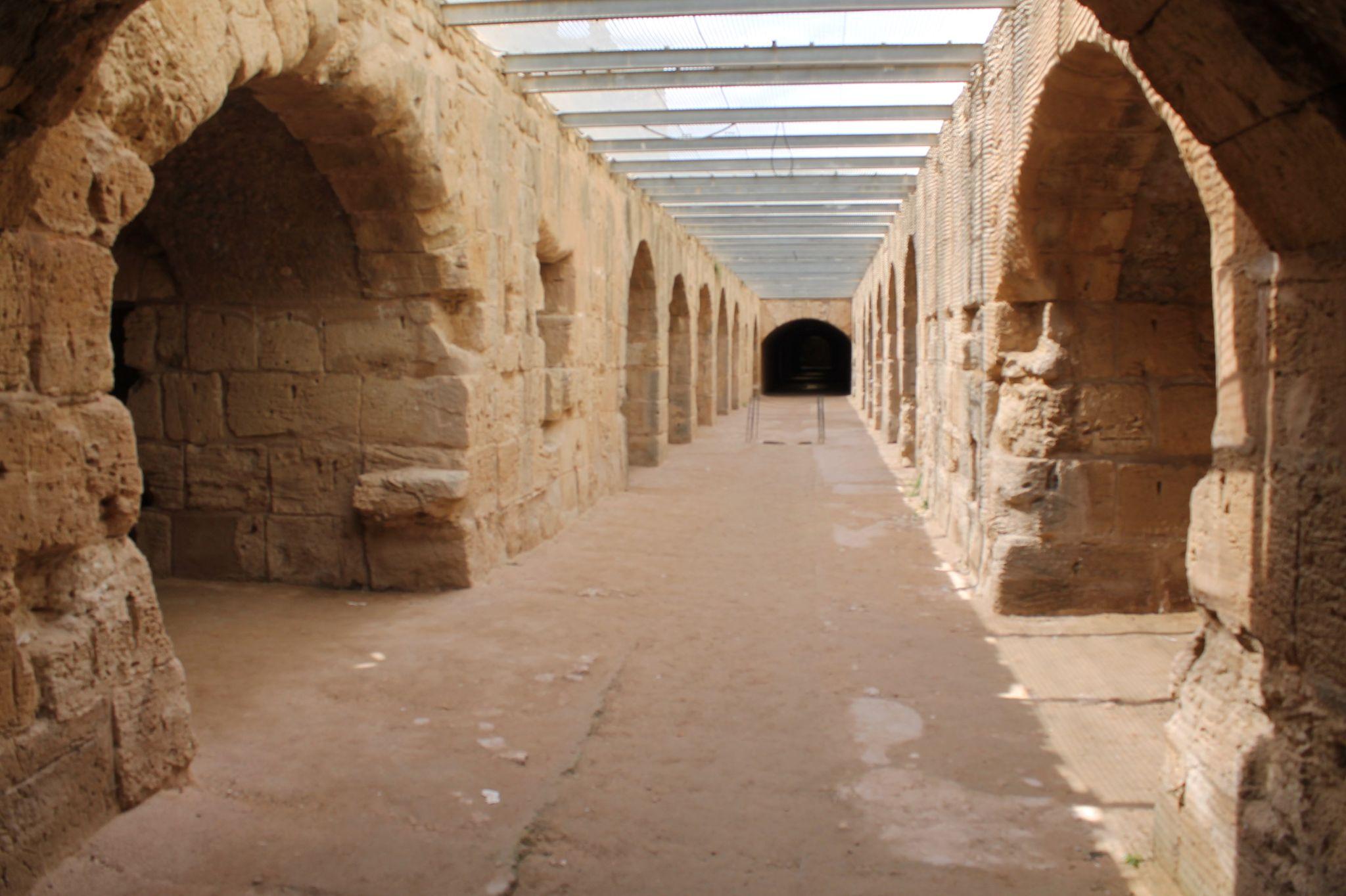 فسيفساء الحوض الروماني بعمادة زردة